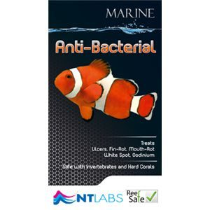 Nt Marine Anti – Bacterial 500Ml