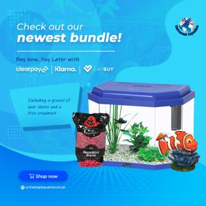 Childrens Aquarium Bundle