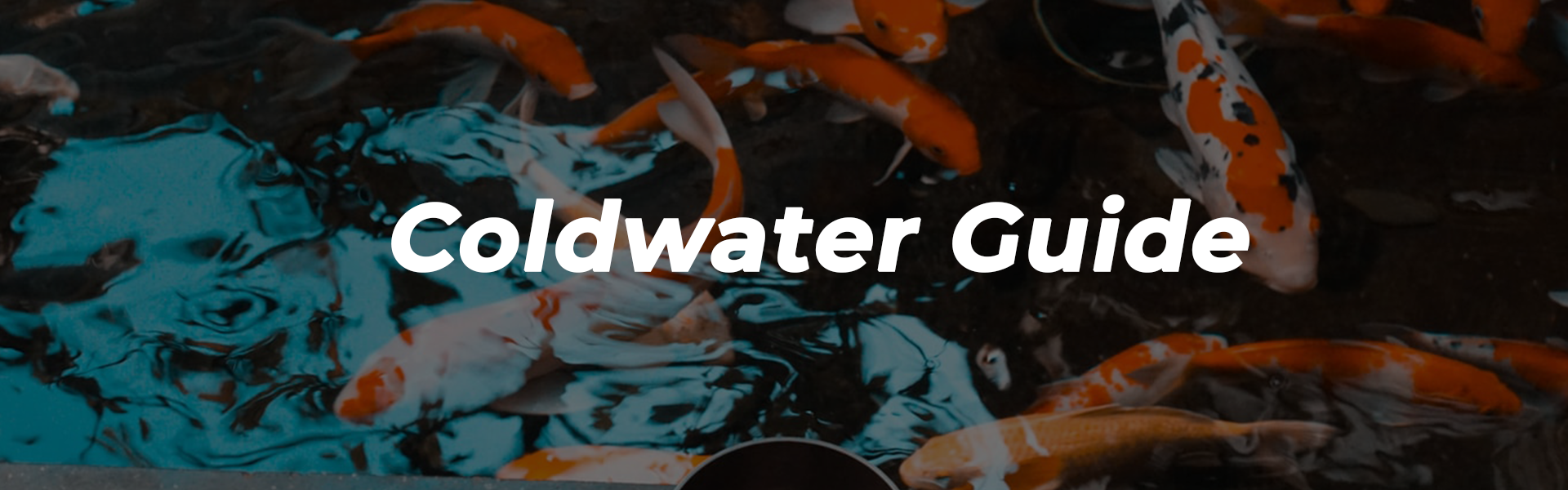Coldwater Guide Banner